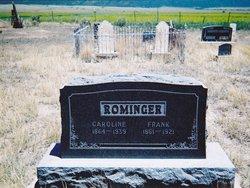Frank Rominger