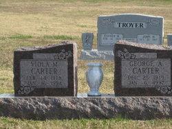 George Allen Carter