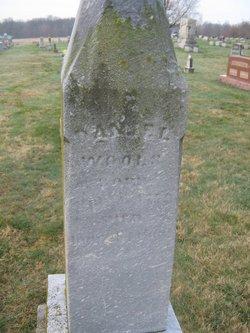Daniel Wools