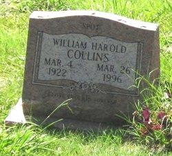 Bill Spot Collins