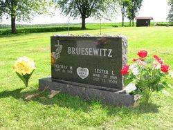 Lester L. Bruesewitz