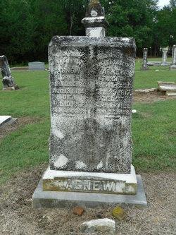 James Wilson Agnew