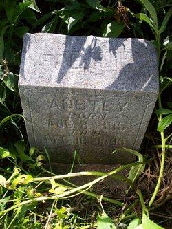Frederick Anstey