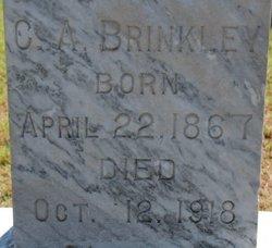 Charles Adrian Brinkley