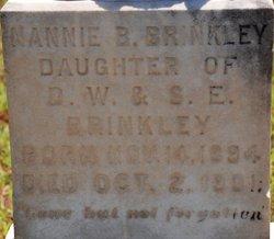 Nannie B. Brinkley