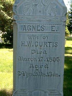 Agnes E <i>Miller</i> Curtis