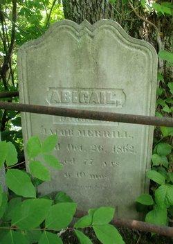 Abigail Merrill