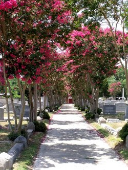 Brith Achim Cemetery