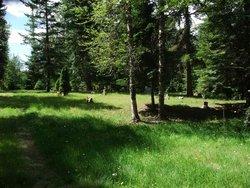 Gamlin Lake Cemetery