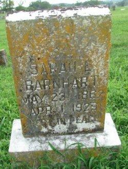 Sarah Elizabeth <i>Pendleton</i> Barnhart