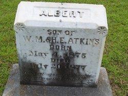 Albert Atkins
