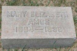 Mary Elizabeth <i>Koontz</i> Amos
