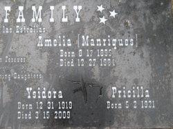 Amelia <i>Manriques</i> Avila
