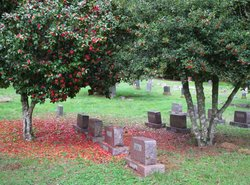 Bellfountain Cemetery