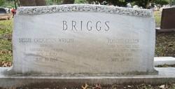Robert Cullen Briggs