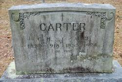 Alice P <i>Register</i> Carter