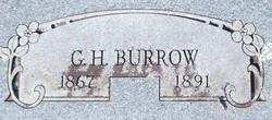 Green Hill Burrow