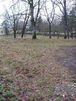 Pauper Cemetery