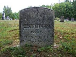 Adoniram Judson Sibley