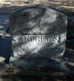 Walter Arthur W.A. Andrews
