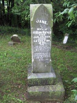Jane <i>Eastes</i> Harvey