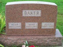 Noah Abraham Baker