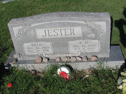 A D Jester