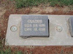 David Walker Moore