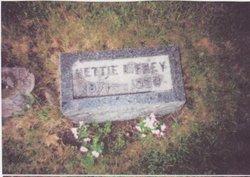 Nettie Elizabeth <i>Griffis</i> Frey