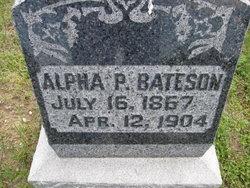 Alpha P Bateson