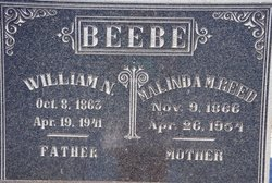 William Nelson Beebe