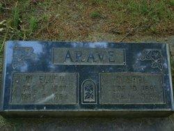 Mary Ellen <i>France</i> Arave