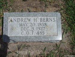 Andrew Herman Berns