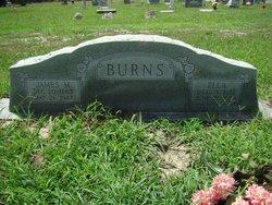 Ella Alberta <i>Raines</i> Burns