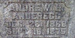Andrew H. Anderegg