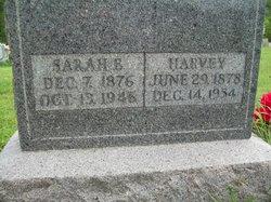 William H. Harvey York