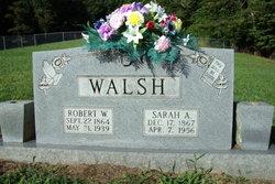 Sarah Ann <i>Grindstaff</i> Walsh