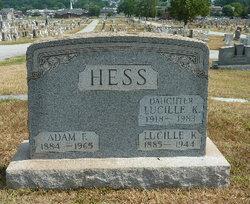 Adam F Hess