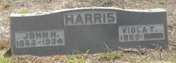 Viola Tranquil <i>Williams</i> Harris