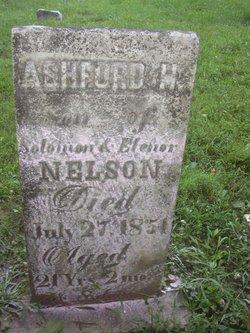 Ashford H Nelson