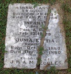 Harriet Anna Eccles