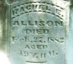 Rachel Elizabeth <i>Clark</i> Allison
