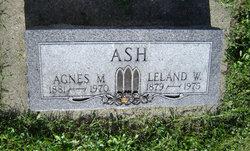 Leland W Ash