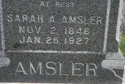 Sarah Ann <i>Ault</i> Amsler