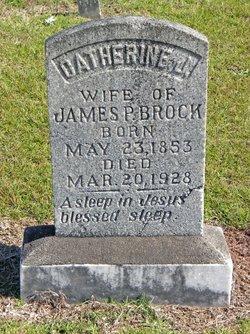Catherine Josephine <i>Smith</i> Brock
