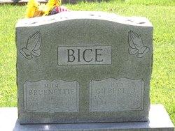 Bruenetta Nette Nette <i>Gardner</i> Bice