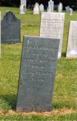 Susanna Susan <i>Prentice</i> Banks