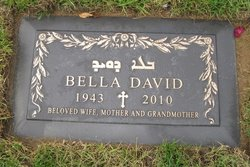 Bella David