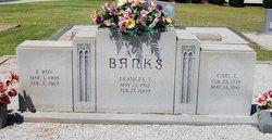 Carl E Banks