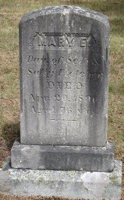 Mary E. Fletcher